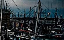 A Good Harbor